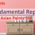 Asian Paints Ltd. Fundamental Report