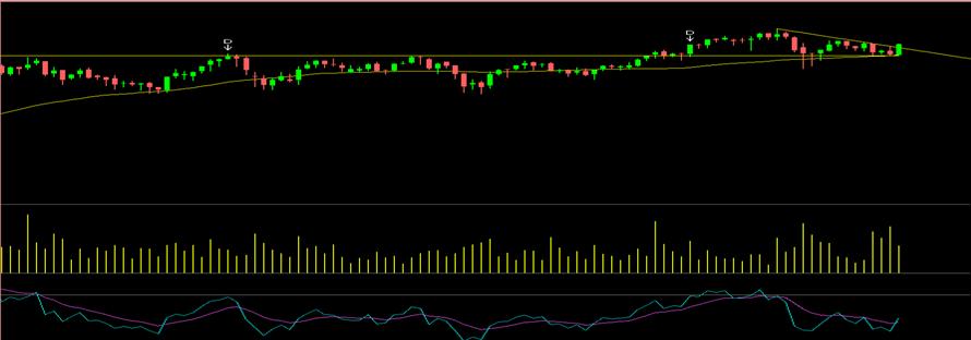 market view LIC